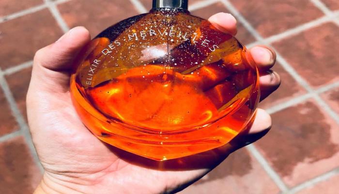 Nước hoa hương Gỗ - Woody